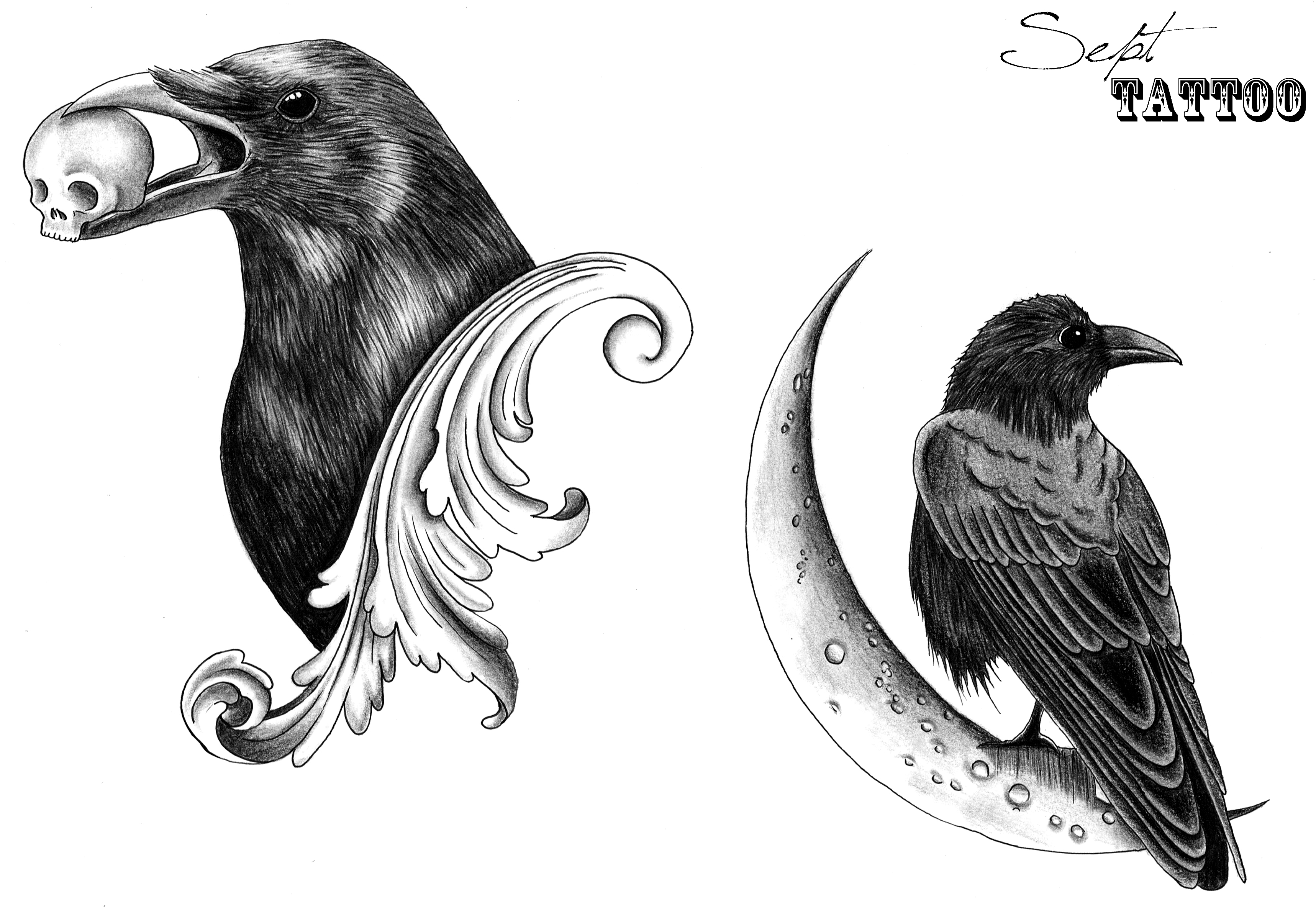 The gallery for corbeau dessin - Coloriage corbeau ...